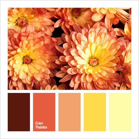 Best-Color-Combinations-(3)