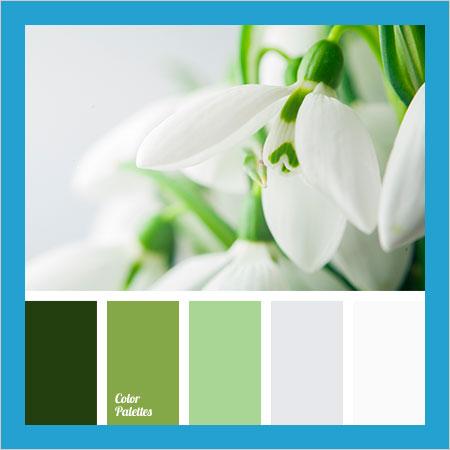 Best-Color-Combinations-(30)