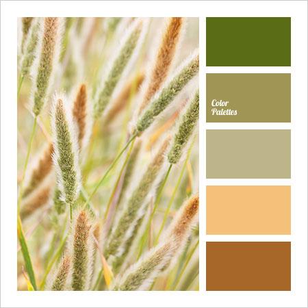 Best-Color-Combinations-(4)