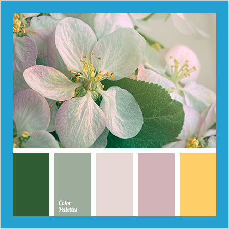 Best-Color-Combinations-(41)