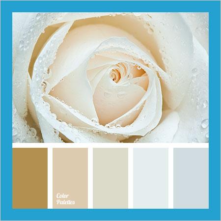 Best-Color-Combinations-(45)