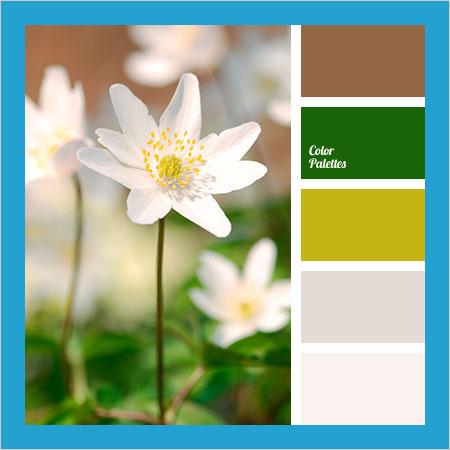 Best-Color-Combinations-(46)