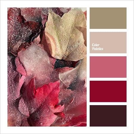 Best-Color-Combinations-(5)