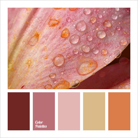 Best-Color-Combinations-(6)