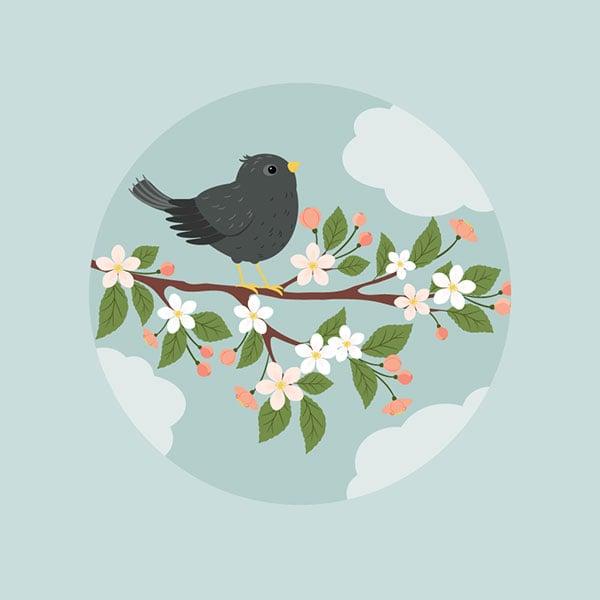 Starling-Illustration-Adobe-Illustrator-Tutorial-