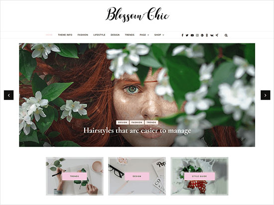 Blossom-Chic-child-theme-of-Blossom-Feminine-WordPress-blog-theme-2019