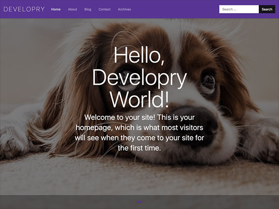 Developry-Lite-Business-WP-themes-with-Extensive-features