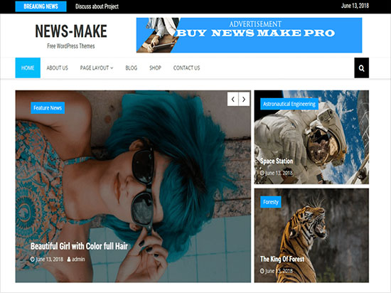 News-Make-Newspaper-Wordpress-theme-2019