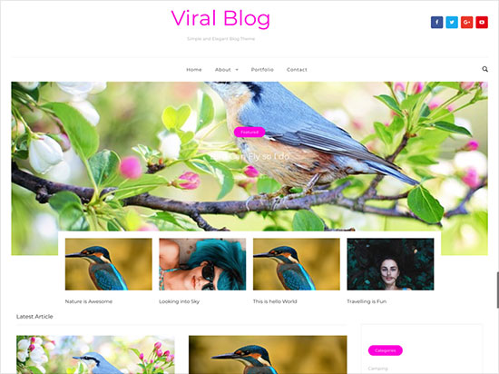 Viral-Blog-Clean-and-Minimalist-WordPress-Blog-Theme-2019