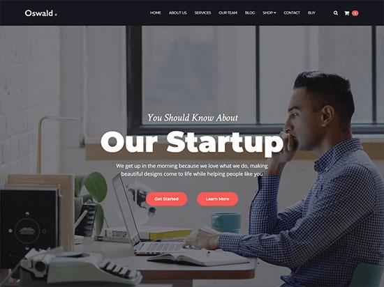 WPDaddy-team-a-powerful-WordPress-theme-for-startups