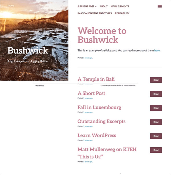 Bushwick-lightweight,-responsive-blogging-theme-2019