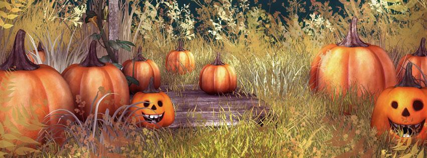 Pumpkins-Facebook-cover-Photo