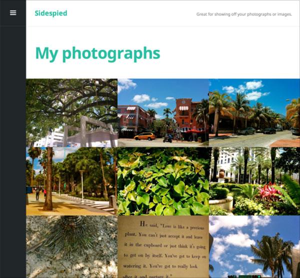 Sidespied-portfolio-wordpress-theme-for-painter,-sculptor,-photographer-or-videomaker