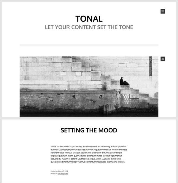 Tonal-minimal-style-wordpress-theme-for-beginners