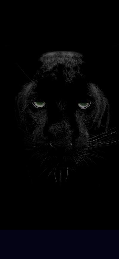 black_panther_iPhone-Xs-Wallpaper