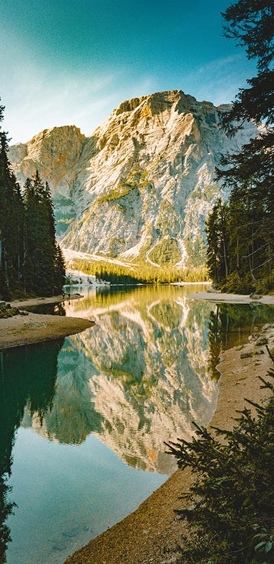Nature-Google-2-XL-&-3-XL-Wallpaper
