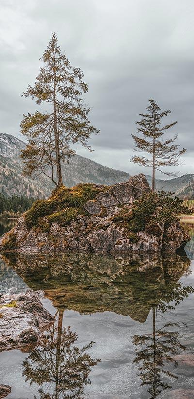 Nature-Landspace-Google-2-XL-&-3-XL-Wallpaper