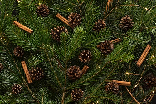 christmas-pine-tree-decor