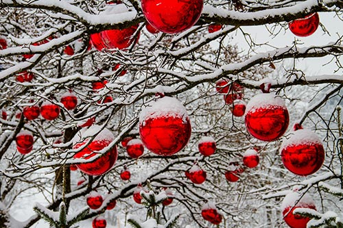 christmas-winter-season-stock-image