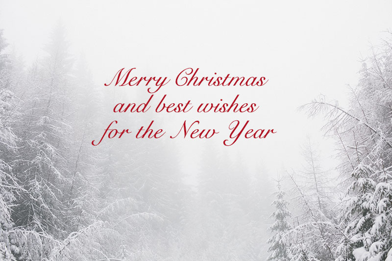 Merry Christmas Wish Images Messages Quotes for Cards (6)