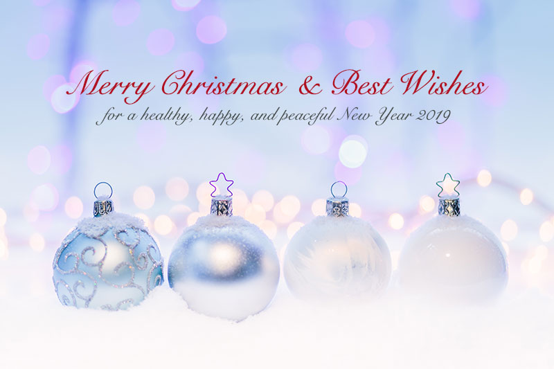 Merry Christmas Wish Images Messages Quotes for Cards (8)