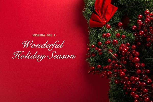 celebration-christmas-christmas-decoration-695971
