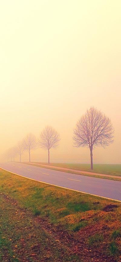 morning_misty_landscape-iPhone-X-Wallpaper