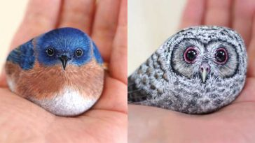 Realistic-Animal-Paintings-On-Stones-By-Akie-Nakata